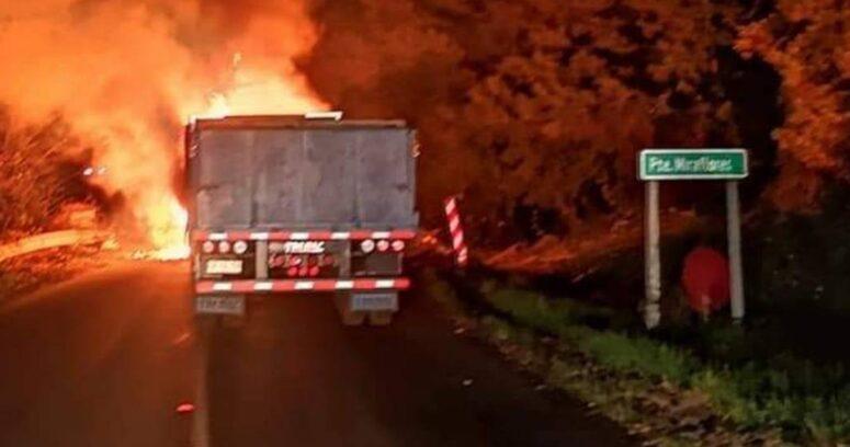 """""""Ataque incendiario deja cuatro camiones afectados en cercanías de Angol"""""""