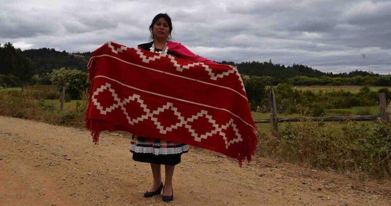 """""""Mantas Trarikan: productos que traspasan conocimientos del telar mapuche"""""""