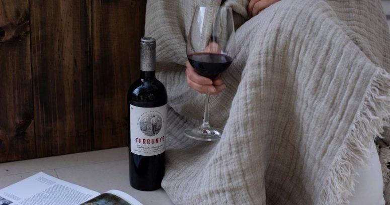 Los vinos más recomendados para las veladas de invierno