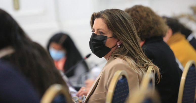 """""""Teresa Marinovic y convencionales oficialistas proponen crear una """"Defensoría del ciudadano"""""""""""