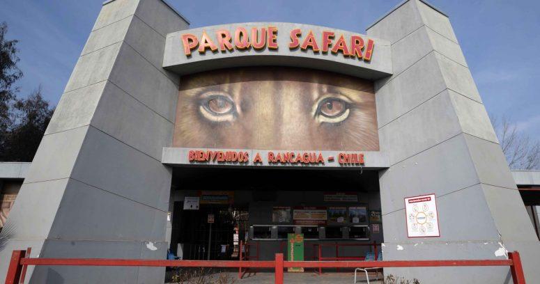 """""""Senador Girardi y muerte en Parque Safari:"""