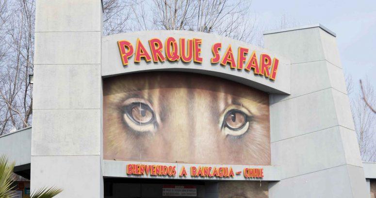 """""""Pololo de trabajadora fallecida en Parque Safari:"""