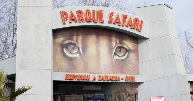 """""""Parque Safari dio detalles del accidente en que trabajadora murió atacada por un tigre"""""""