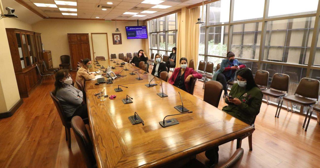 Tras su aprobación en general, ahora comenzará la discusión en particular en la Comisión de Mujeres de la Cámara de Diputados. AGENCIA UNO/ARCHIVO