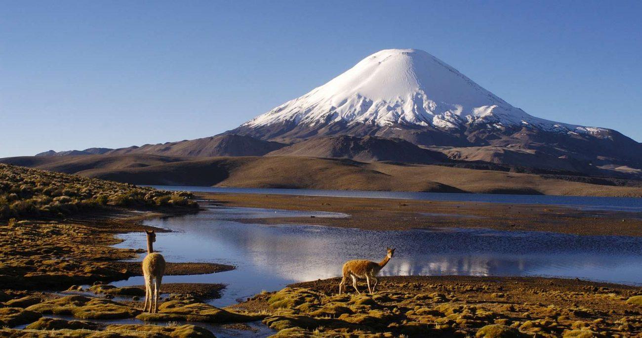 La reserva superará el millón de hectáreas protegidas. CHILE ES TUYO/ARCHIVO