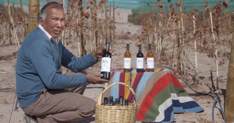 INDAP invita a pequeños productores vitivinícolas al Catad'Or Wine Awards 2021