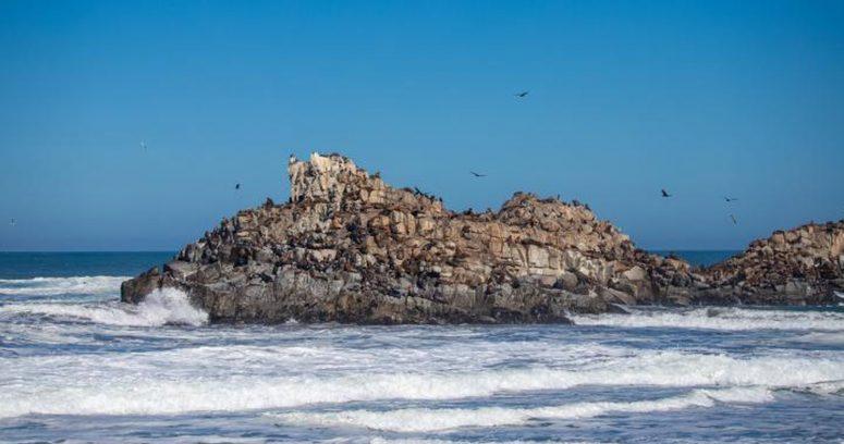 """""""Armada continúa con la búsqueda de desaparecidos en la Iglesia de Piedra en Cobquecura"""""""