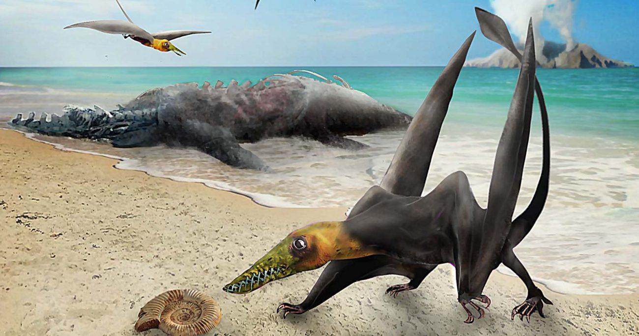 El fósil fue encontrado en 2009 durante una expedición a la localidad de Cerritos Bayos. U. DE CHILE